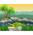 Cute little crocodile posing on the rock vector image vector image