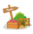 farm fresh fruits vector image