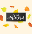 hello autumn banner template fall calligraphy vector image