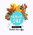 ultimate sale design with fall leaves wreath vector image