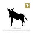 black silhouette of wildebeest african animals vector image