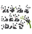 collection happy panda with various posing vector image vector image