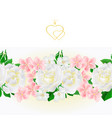 floral border seamless background white roses vector image vector image