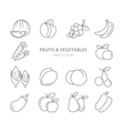 Fruits and vegetables linear icons set vector image vector image