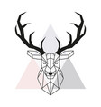 geometric deer head stag head and antlers vector image vector image