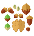Nuts Icon set vector image vector image