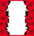 red poinsettia border vector image vector image
