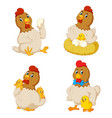 collection cute chicken with various posing vector image