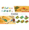 isometric agriculture elements collection vector image