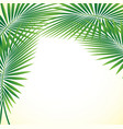 palm leaf background eps10 vector image