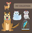 pets animals flat color characters set vector image