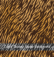 Zebra Texture background vector image