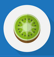 of fruits symbol on kiwi flat vector image