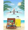 air plane flying to sea with beach travel object vector image vector image