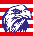 american eagle with usa flag eps 10 vector image vector image