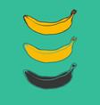 banana fruit vector image vector image