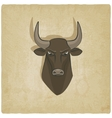 bull head old background vector image
