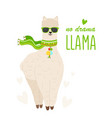 cute cartoon llama alpaca with glasses vector image vector image