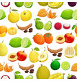 fruits tropical pattern background seamless fruit vector image