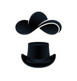 hats for men and women isolated vector image