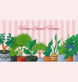 home sweet home poster with house flowers indoor vector image
