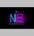 neon lights alphabet nb n b letter logo icon vector image