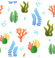 pattern with coral and algae vector image
