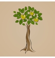 Tree with some green apples on it vector image