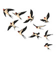 a flock flying swallows of vector image