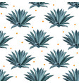 blue agave seamless pattern background vector image