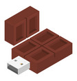 choco usb flash icon isometric style vector image