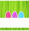 Easter green background with ornament eggs vector image vector image