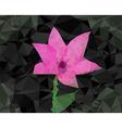 Flower poligon design vector image vector image