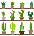 home cactus icons cactus icons in a flat style vector image