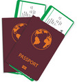 passport and airline ticket or boarding pass vector image vector image