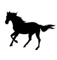 running horse black silhouette vector image vector image