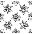 seamless pattern with black and white daffodil vector image vector image