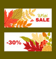 set two mautumn banners with leaves and berries vector image