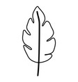 sketch contour of wavy leaf plant with a branch vector image vector image