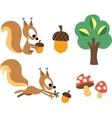 Squirrel acorn design elements vector image