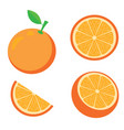 an orange vector image