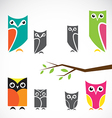 group owls and branch vector image