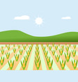 high quality design sweet golden and cute farm vector image vector image