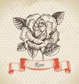 Rose hand drawn vintage design