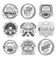 set nine craft beer vector image vector image