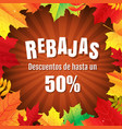 autumn rebajas poster with leaves vector image