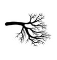bare branch symbol icon design beautiful vector image