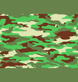 camouflage pattern background shapes of foliage vector image