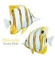 Fish set vector image vector image