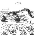 image landscape with fields and house vector image